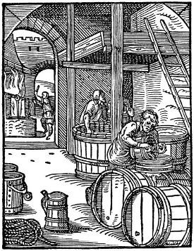origen-cerveza-bierbrauer