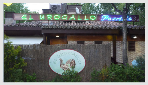 Bar El Urogallo (Latina)